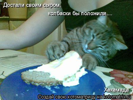 Котоматрица: Достали своим сыром, колбаски бы положили.... Хакамада