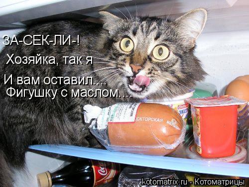 Котоматрица: ЗА-СЕК-ЛИ-! Хозяйка, так я И вам оставил.... Фигушку с маслом....