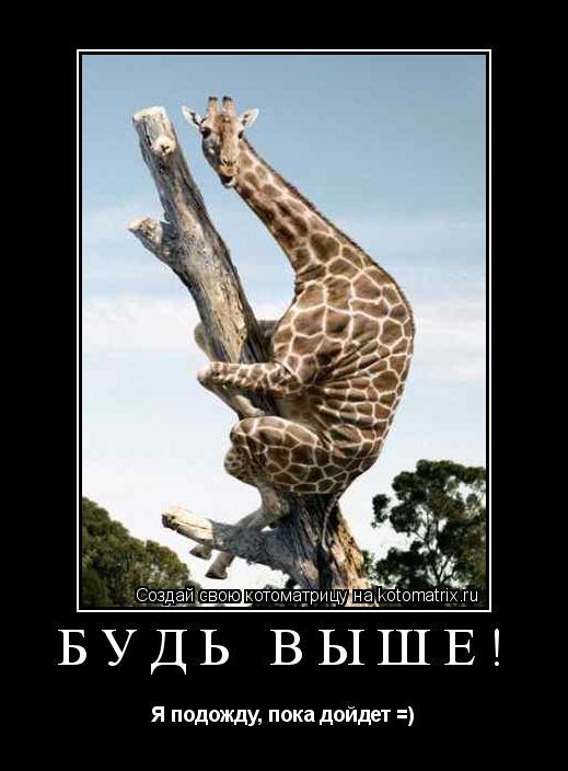 Котоматрица: Будь выше! Я подожду, пока дойдет =)