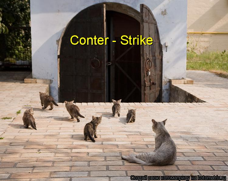 Котоматрица: Conter - Strike