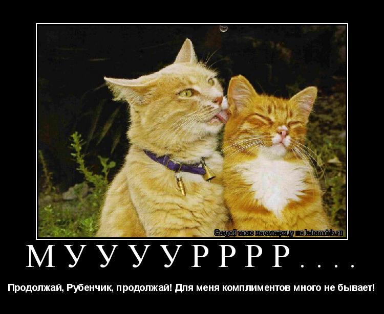 Котоматрица: Муууурррр.... Продолжай, Рубенчик, продолжай! Для меня комплиментов много не бывает!
