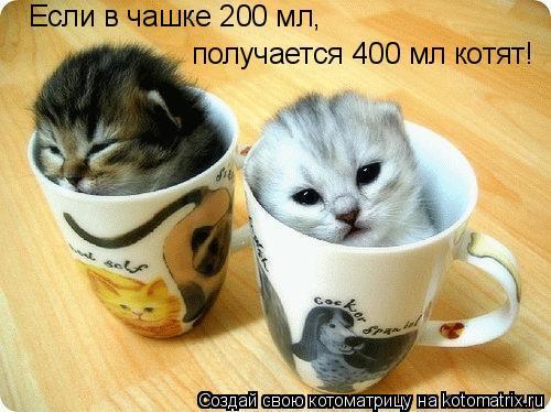 Котоматрица: Если в чашке 200 мл, получается 400 мл котят!