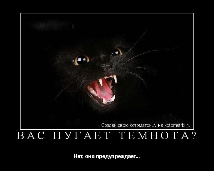 Котоматрица: Вас пугает темнота? Нет, она предупреждает...