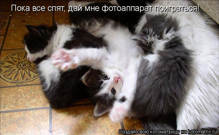 Котоматрица: Пока все спят, дай мне фотоаппарат поиграться!