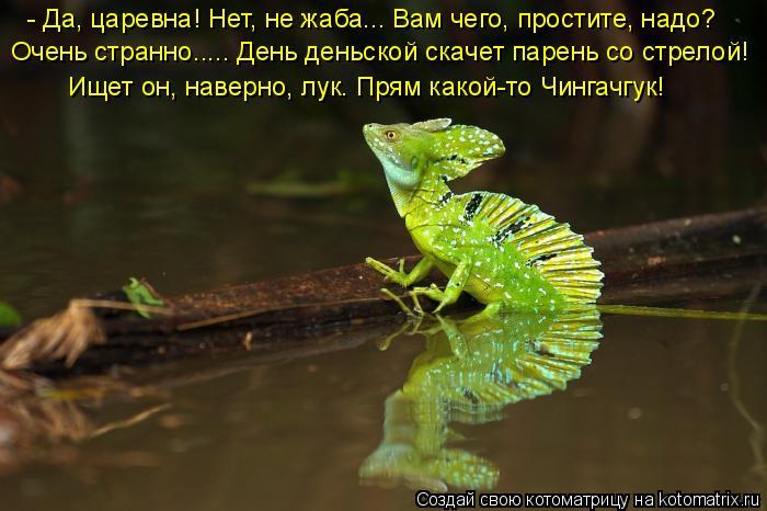 Котоматрица: - Да, царевна! Нет, не жаба….. Вам чего, простите, надо? Очень странно..... День деньской скачет парень со стрелой! Ищет он, наверно, лук. Прям как
