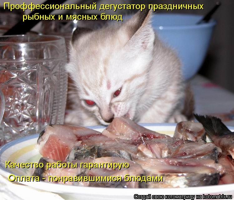 Котоматрица: Проффессиональный дегустатор праздничных рыбных и мясных блюд Качество работы гарантирую Оплата - понравившимися блюдами