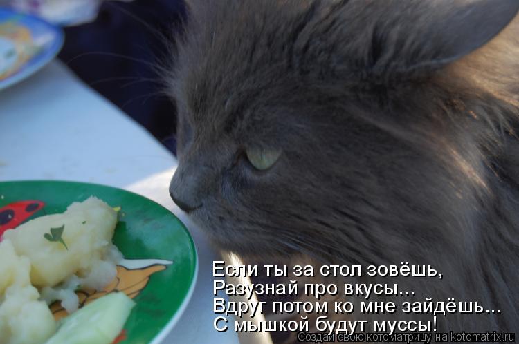 Котоматрица: Если ты за стол зовёшь, Разузнай про вкусы... Вдруг потом ко мне зайдёшь... С мышкой будут муссы!