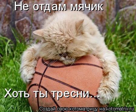 Котоматрица: Не отдам мячик Хоть ты тресни...