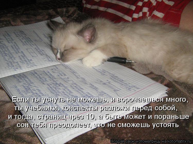 Котоматрица: Если ты уснуть не можешь, и ворочаешься много, ты учебники, конспекты разложи перед собой, и тогда, страниц чрез 10, а быть может и пораньше со