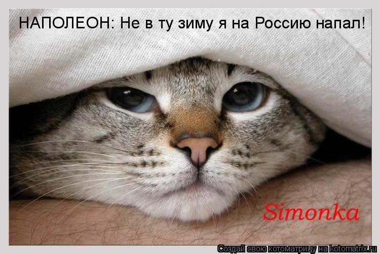 Котоматрица: НАПОЛЕОН: Не в ту зиму я на Россию напал!