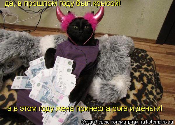 Котоматрица: да, в прошлом году был крысой! а в этом году жена принесла рога и деньги!