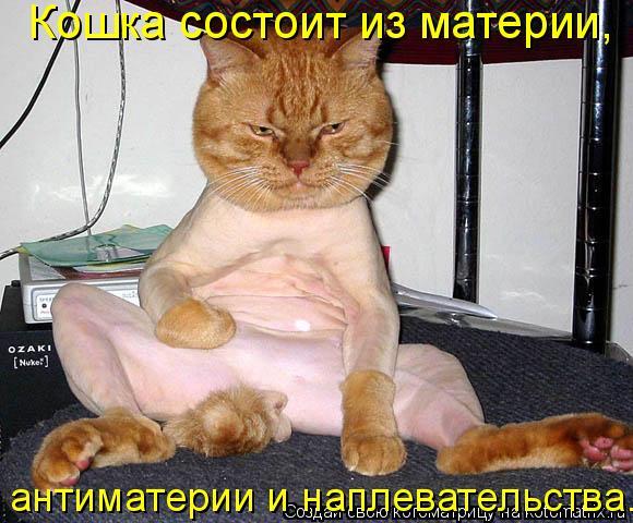 Котоматрица: Кошка состоит из материи,  антиматерии и наплевательства.