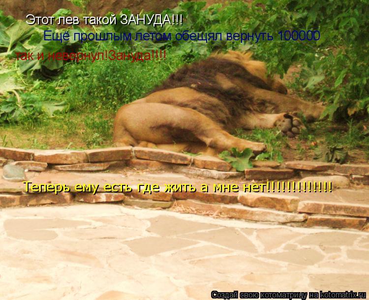 Котоматрица: Этот лев такой ЗАНУДА!!! Ещё прошлым летом обещял вернуть 100000  так и невернул!Зануда!!!! Теперь ему есть где жить а мне нет!!!!!!!!!!!!!
