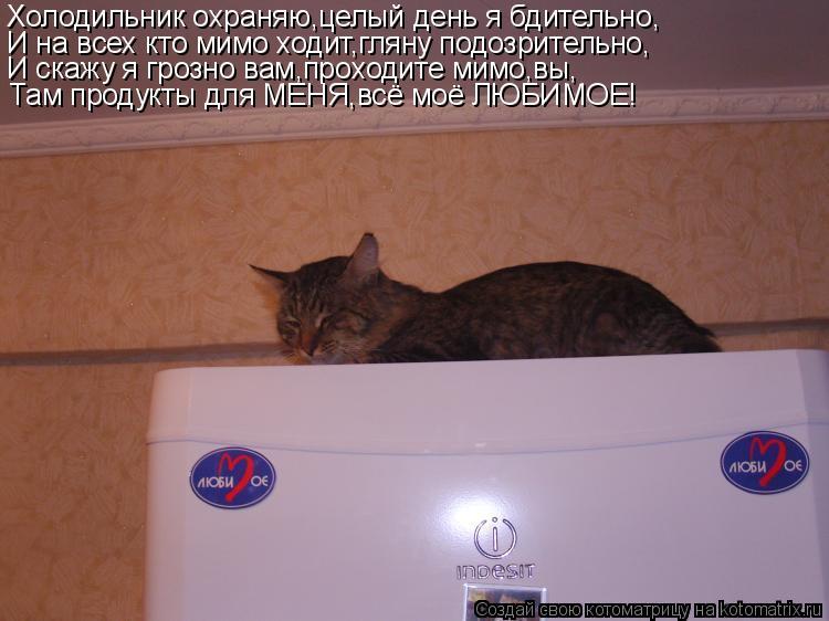 Котоматрица: Холодильник охраняю,целый день я бдительно, И на всех кто мимо ходит,гляну подозрительно, И скажу я грозно вам,проходите мимо,вы, Там продук