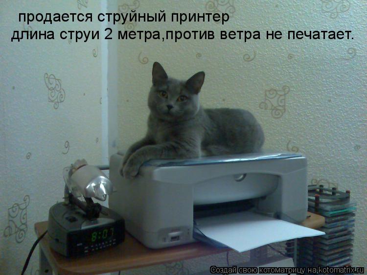 Котоматрица: продается струйный принтер длина струи 2 метра,против ветра не печатает.