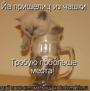 Котоматрица: Йа пришелиц из чашки Трэбую побольше места!