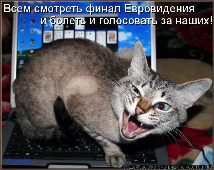 Котоматрица: Всем смотреть финал Евровидения  и болеть и голосовать за наших!