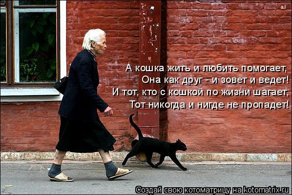 Котоматрица: Она как друг - и зовет и ведет! А кошка жить и любить помогает, И тот, кто с кошкой по жизни шагает, Тот никогда и нигде не пропадет!