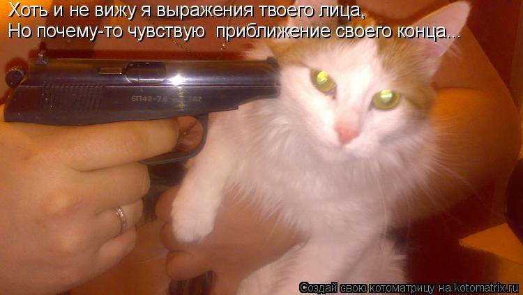 Котоматрица: Хоть и не вижу я выражения твоего лица, Но почему-то чувствую  приближение своего конца...
