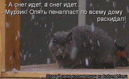 Котоматрица: - А снег идет, а снег идет... - Мурзик! Опять пенапласт по всему дому  раскидал!