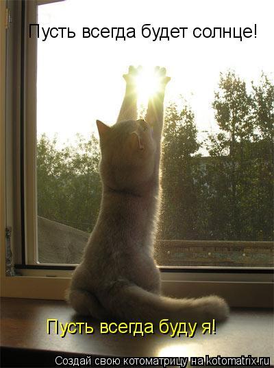 Котоматрица: Пусть всегда будет солнце! Пусть всегда буду я!