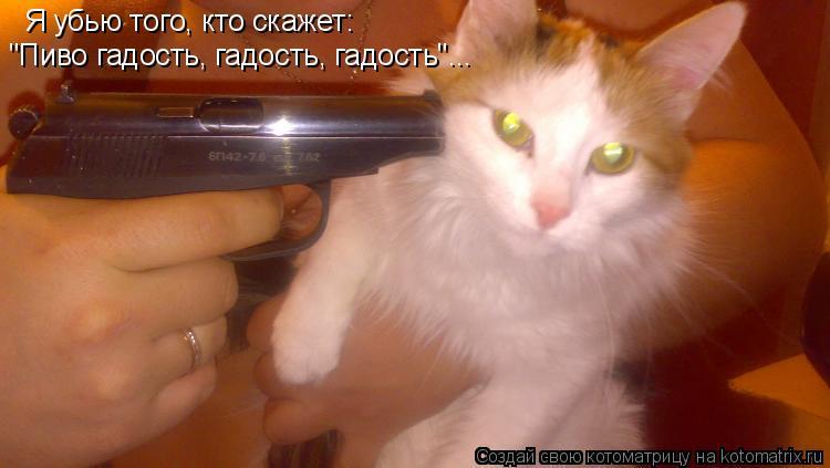 """Котоматрица: Я убью того, кто скажет: """"Пиво гадость, гадость, гадость""""..."""