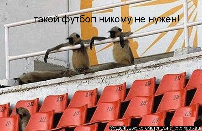 Котоматрица: такой футбол никому не нужен!