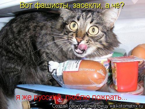 Котоматрица: Вот фашисты, засекли, а чё? я же русский, люблю пожрать...