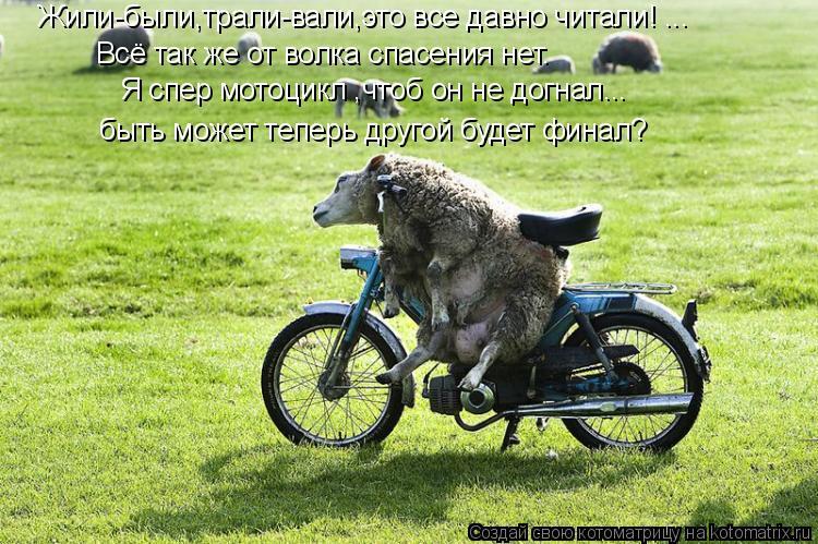 Котоматрица: Всё так же от волка спасения нет. Жили-были,трали-вали,это все давно читали! ... Я спер мотоцикл ,чтоб он не догнал... быть может теперь другой б