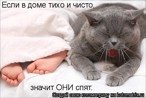 Котоматрица: Если в доме тихо и чисто, значит ОНИ спят.