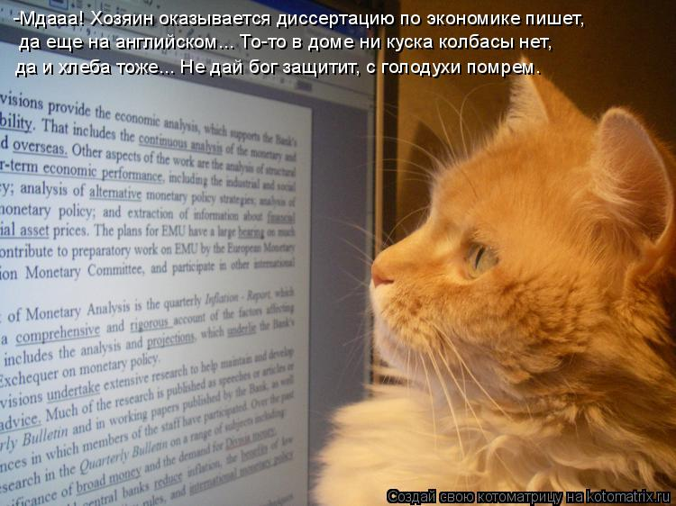 Котоматрица: -Мдааа! Хозяин оказывается диссертацию по экономике пишет,  да еще на английском... То-то в доме ни куска колбасы нет,  да и хлеба тоже... Не дай