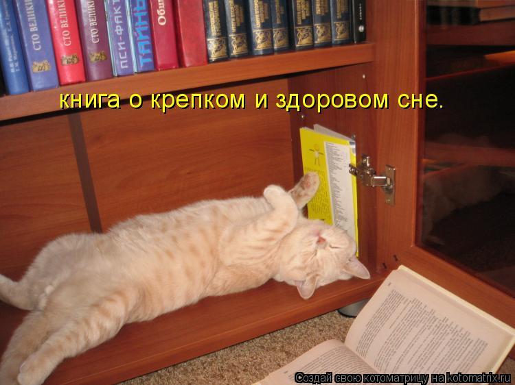 Котоматрица: книга о крепком и здоровом сне.