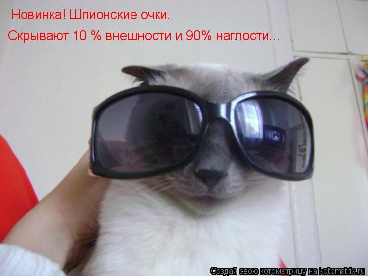 Котоматрица: Новинка! Шпионские очки. Скрывают 10 % внешности и 90% наглости...