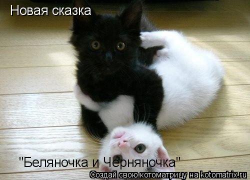 """Котоматрица: Новая сказка """"Беляночка и Черняночка"""""""
