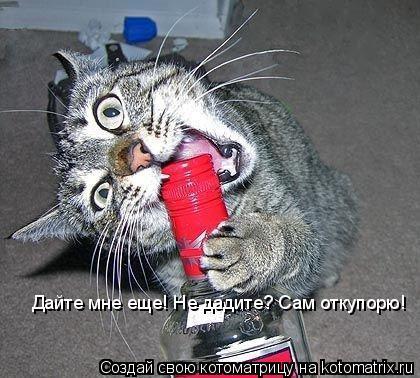 Котоматрица: Дайте мне еще! Не дадите? Сам откупорю!