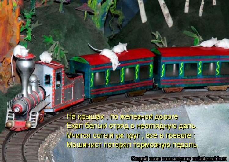Котоматрица: На крышах , по железной дороге Ехал белый отряд в неоглядную даль. Мчится сотый уж круг , все в тревоге : Машинист потерял тормозную педаль.