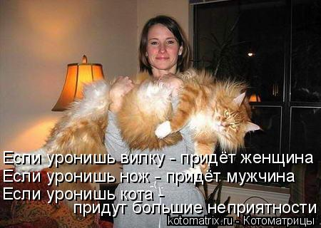 Котоматрица: придут большие неприятности Если уронишь нож - придёт мужчина Если уронишь вилку - придёт женщина Если уронишь кота -