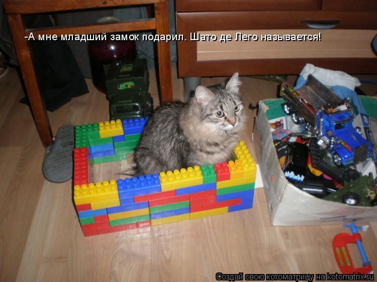 Котоматрица: -А мне младший замок подарил. Шато де Лего называется!
