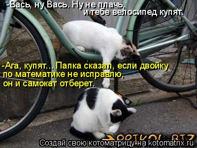 Котоматрица: -Вась, ну Вась. Ну не плачь,  и тебе велосипед купят. -Ага, купят... Папка сказал, если двойку  по математике не исправлю,  он и самокат отберет.