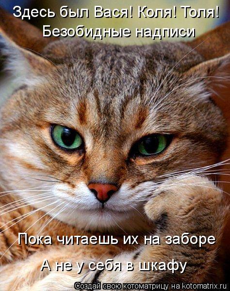 Котоматрица: Здесь был Вася! Коля! Толя! Безобидные надписи Пока читаешь их на заборе А не у себя в шкафу