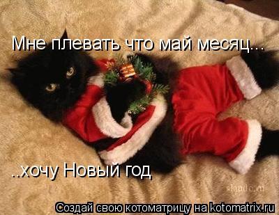 Котоматрица: Мне плевать что май месяц... ..хочу Новый год