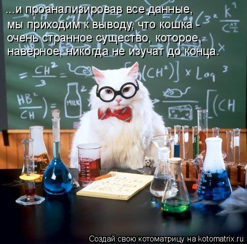 Котоматрица: ...и проанализировав все данные,  мы приходим к выводу, что кошка -  наверное, никогда не изучат до конца. очень странное существо, которое,