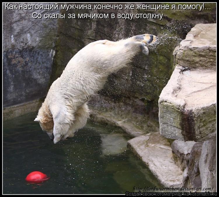 Котоматрица: Как настоящий мужчина,конечно же женщине я помогу!... Со скалы за мячиком в воду столкну