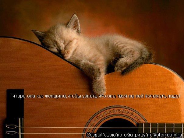 Котоматрица: Гитара она как женщина,чтобы узнать что она твоя на ней полежать надо!