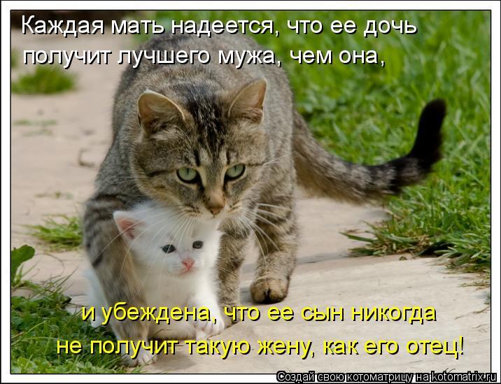 Котоматрица: Каждая мать надеется, что ее дочь  получит лучшего мужа, чем она,  и убеждена, что ее сын никогда  не получит такую жену, как его отец!