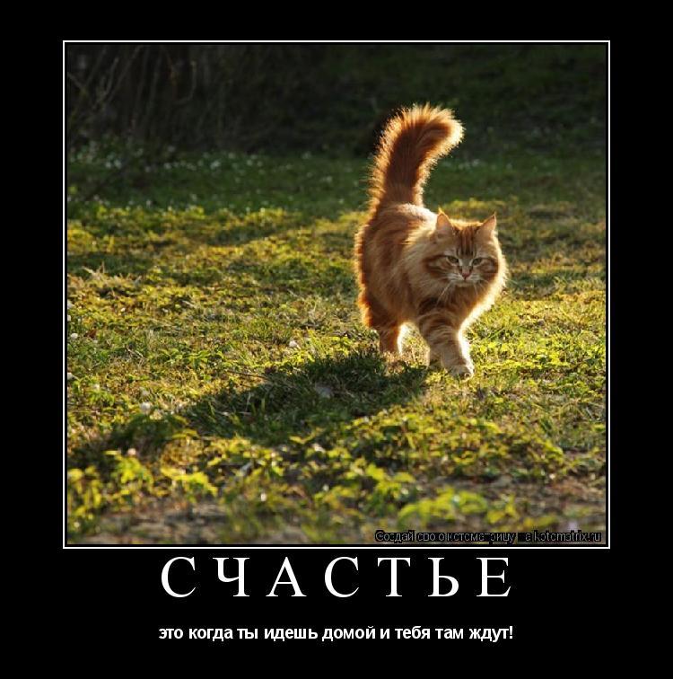 http://kotomatrix.ru/images/lolz/2009/05/19/Jn.jpg