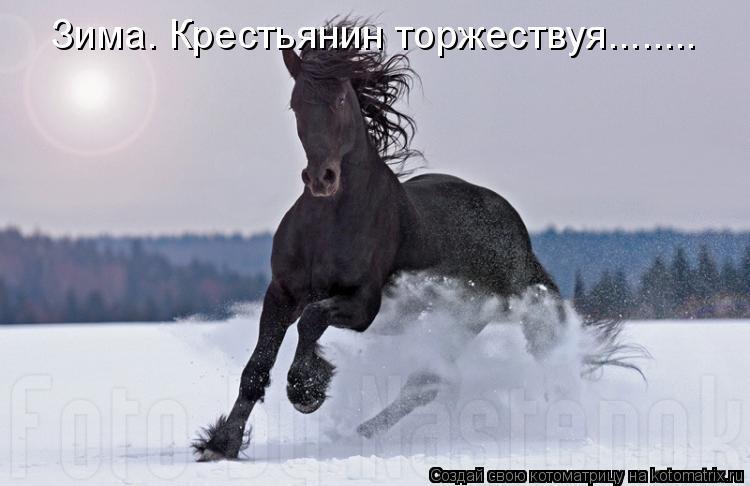 Котоматрица: Зима. Крестьянин торжествуя........