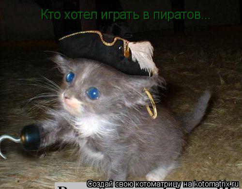 Котоматрица: Кто хотел играть в пиратов...