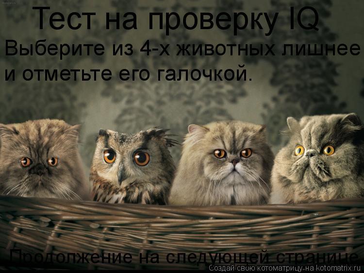 Котоматрица: Тест на проверку IQ Выберите из 4-х животных лишнее и отметьте его галочкой. Продолжение на следующей странице.