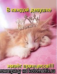 Котоматрица: В каждой девушке живёт принцесса!!!